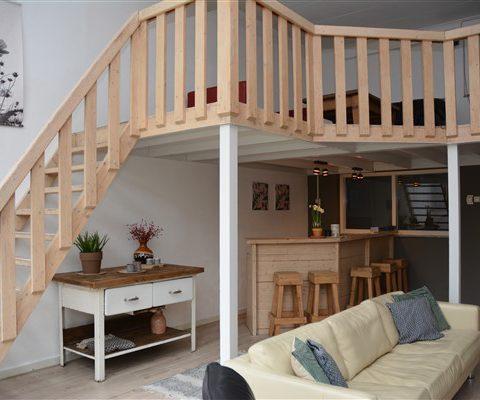 Groepshuis in Drenthe voor 18 personen met huiskamer met bar en vide.