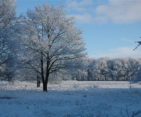 Genieten van Drenthe in de winter tijdens een weekendje in het Hiekerhoes .